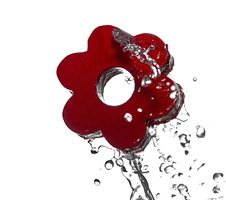 Free Water Splash On Red Flower Stock Images - 18764974