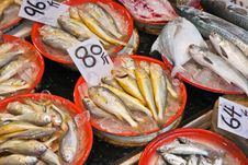 Whole Fresh Fishes Are Offered In The Fish Market Royalty Free Stock Image