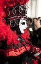 Free Venice Carnival Royalty Free Stock Image - 18773636