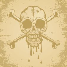 Free Skull And Crossbones Stock Images - 18772564