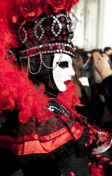 Free Venice Carnival Royalty Free Stock Image - 18773636