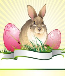 Easter Background With Rabbit
