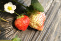 Free Strawberry Stock Images - 18781684