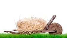 Free Dried Straw On A Green Lawn Stock Photo - 18782170