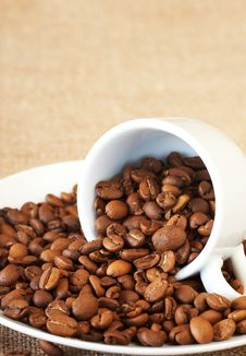 Cup Filled With Coffee Beans Royalty Free Stock Images