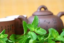 Free Mint Tea Royalty Free Stock Photos - 18788568