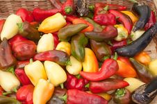 Free Brightly Colored Peppers Royalty Free Stock Photos - 18794098