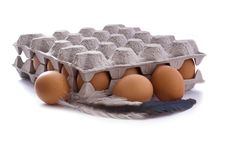 Eggs In Carton Stock Photos