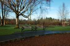 Free Bench In Park Stock Images - 1881344