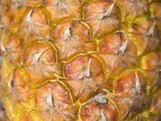 Free Ananas01 Royalty Free Stock Image - 1881876