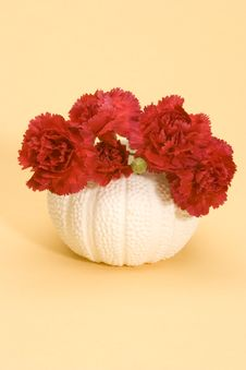 Free Red Carnations Royalty Free Stock Photo - 1881885