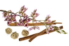 Free Orchid And Cinnamon Stock Photography - 1883562