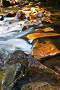 Free Waterfall Royalty Free Stock Photo - 18805735