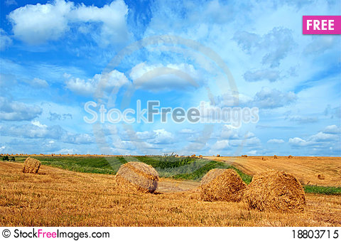 Free Field With Straw Bales Royalty Free Stock Photo - 18803715