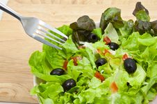 Free Greek Salad Style Stock Images - 18800334