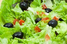 Free Salad Royalty Free Stock Photography - 18800367