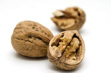 Free Walnut Shell Cracked Stock Photography - 18800792