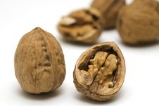 Free Walnut Shell Cracked Stock Photo - 18800820