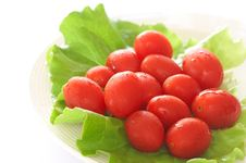 Fresh Rosa Tomatoes And Lettuce Stock Image