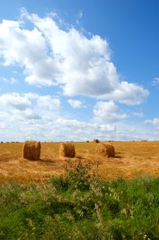 Free Field With Hay Or Straw Bales Royalty Free Stock Photography - 18801947