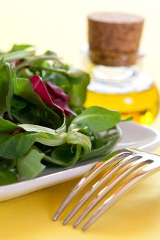 Free Salad On A Plate Royalty Free Stock Image - 18801976
