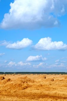 Free Field With Straw Bales Royalty Free Stock Photos - 18801978