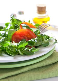 Free Fresh Green Salad Royalty Free Stock Photography - 18802057