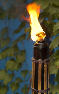 Outdoor Torch Stock Photography