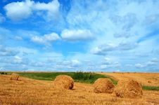 Field With Straw Bales Royalty Free Stock Photo
