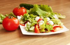 Salad With Mozzarella And Tomatoes Stock Image