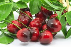 Free Sweet Red Cherry Royalty Free Stock Image - 18804726