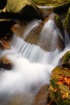 Free Stream In November Royalty Free Stock Photography - 18806057