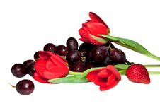 Free Fruit, Berries And Flowers Royalty Free Stock Photos - 18808048