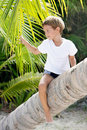 Free Boy Sitting On Palm Tree Royalty Free Stock Image - 18814876