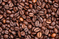 Free Dark Roasted Coffee Beans Texture Royalty Free Stock Image - 18817066
