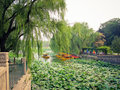 Free Beihai Imperial Park Stock Image - 18818341