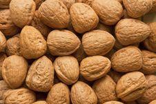 Free Lots Of Walnuts Royalty Free Stock Photos - 18810818