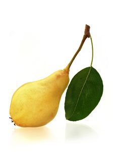 Free Juicy Pear Stock Images - 18813154