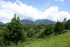 Free Mount Kitanglad Royalty Free Stock Image - 18813326