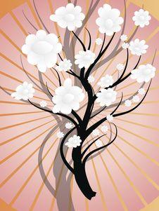 White  Bush On Pink Background Stock Images