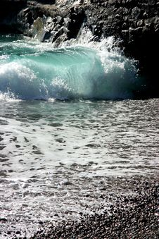 Free Wild Sea Stock Photography - 18815652