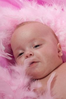 Free Three Month Old Baby Laying On Pink Blanket Stock Photos - 18815923