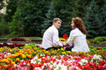 Free Romantic Date In The Flower Park Stock Photography - 18822352