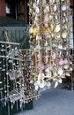 Free Shells Stock Photo - 18824630
