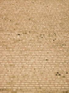 Free Brick Wall Royalty Free Stock Images - 18820929