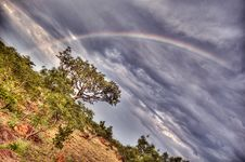 Free Rainbow Over The Trees Royalty Free Stock Photos - 18822918
