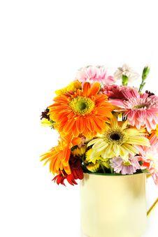Free Gerbera In Vase Royalty Free Stock Photo - 18823155