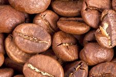 Free Coffee Royalty Free Stock Image - 18829836