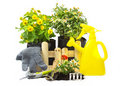Free Home Gardening Royalty Free Stock Images - 18831839