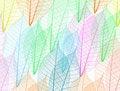 Free Skeleton Leaves Background Stock Photos - 18836073